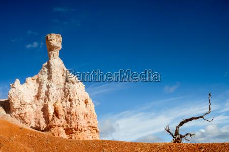 stone gnome and a dead tree
