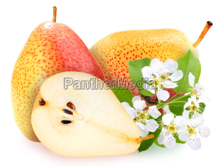 pears with green leaf and flowers