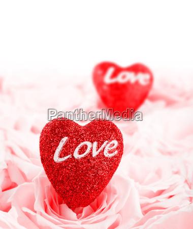 beautiful pink roses hearts border