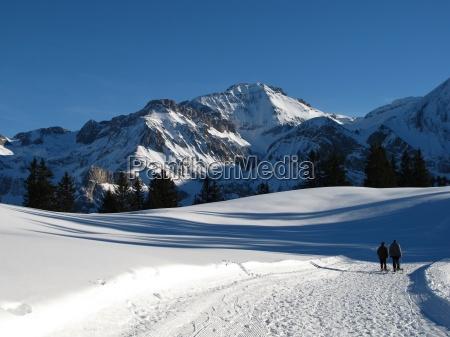 winter scenery in the bernese oberland