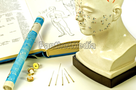 acupuncture needles with textbook head model