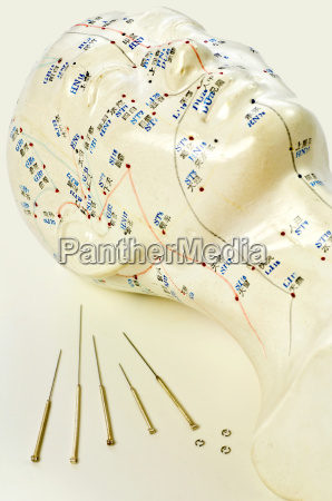 acupuncture needles with head model