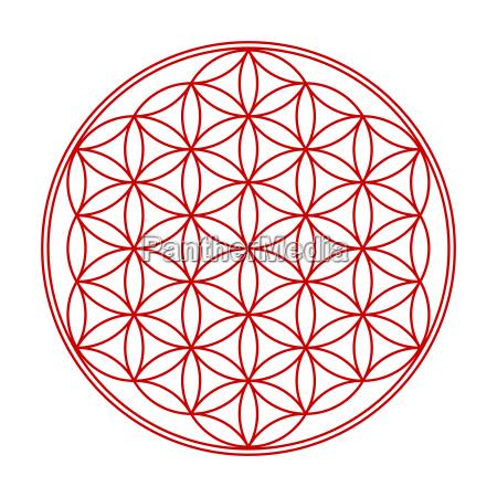 flower of life symbol red white