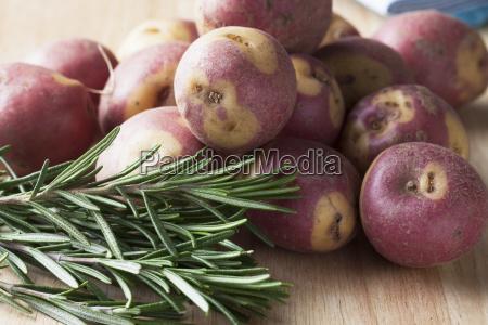 apache potatoes and rosemary