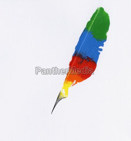 feather color fantasy concept
