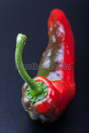 closeup of a red hot peppers