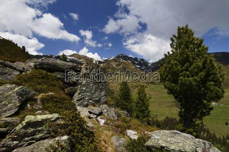 in the beautiful zillertal austria