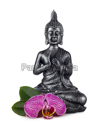 flor planta buda sabor paz incienso