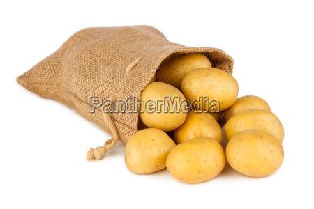 potatoe bag