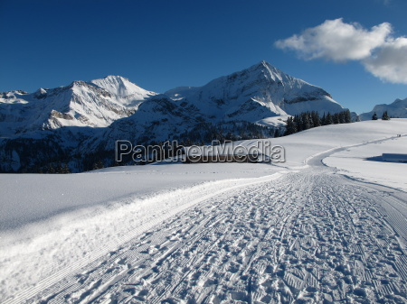 wildstrubel and spitzhorn in the winter