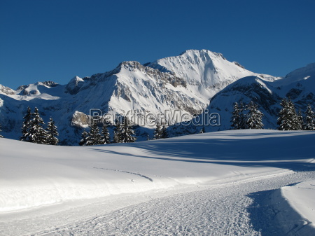 wildstrubel and slope