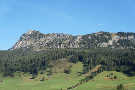 the einstein in the tannheimer valley