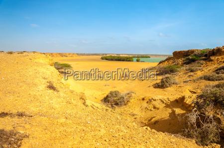 desert landscape and bay