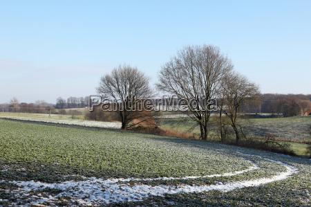 cold winter morning in eastern westphalia