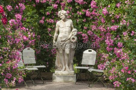 rose garden news baden baden