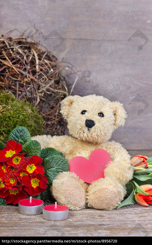 teddy - 8956720