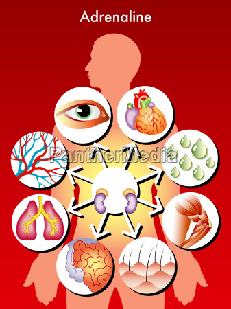 medical symbolic illustration of the effects