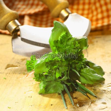 bouquet garni of fresh herbs