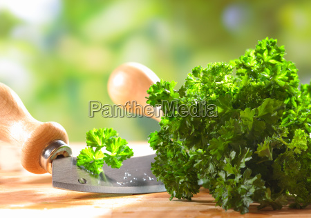 fresh crinkly leaf parsley