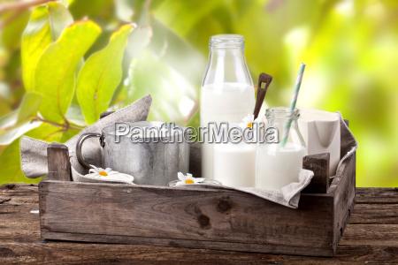 fresh milk in the garden