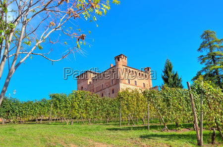 view of medieval castle of grinzane