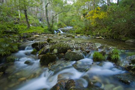 water flows along a mountain stream