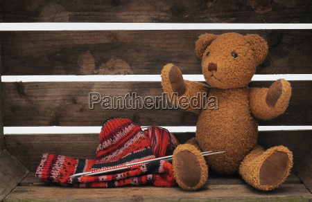 wool and teddy
