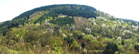mountain ridge in springtimern