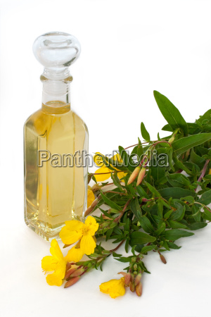 evening primrose oil with flowers