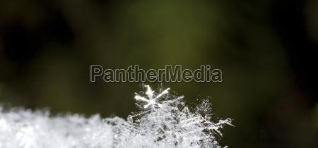 luminous snow crystal panorama