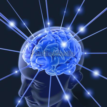 brain energy pulse