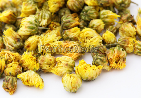 dried chamomile tea isolated on white