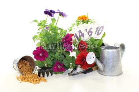 fertilizer with garden utensils