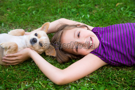 children girl playing with chihuahua dog