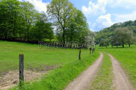 countryside lane
