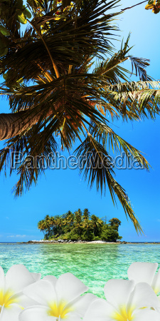 tropical scene vertical panoramic composition