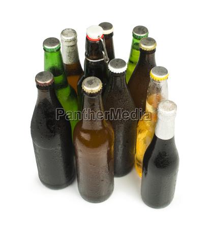 group of beer bottles isolated studio