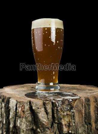 beer mug on stump