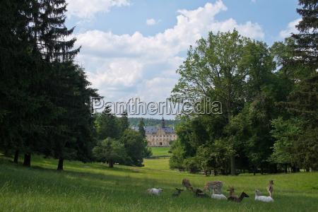 tambach castle wildlife park