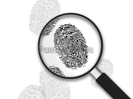 magnifying glass finger prints