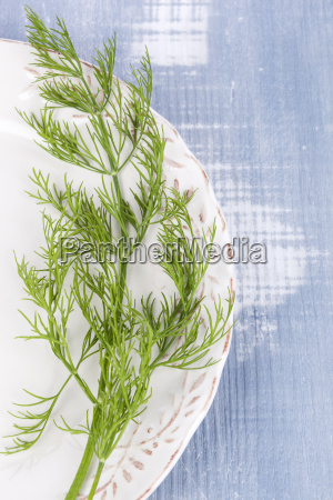 fresh dill on vintage plate