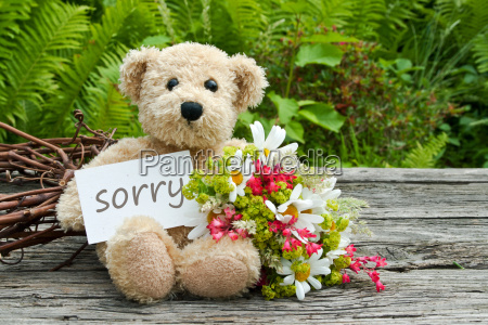 sorry excuse apology sad daisy daisies