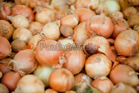 fresh onion on the market in