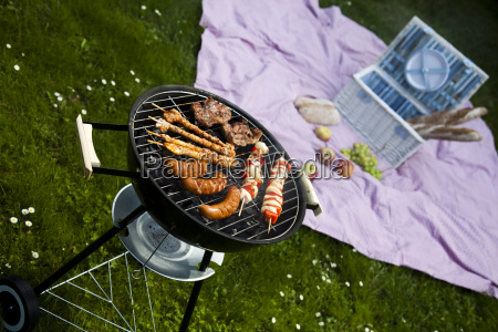 picnic grilling time grill