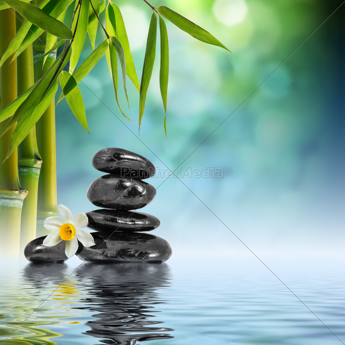 stones, and, bamboo, on, the, water - 9763236