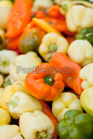 red yellow green paprika macro close
