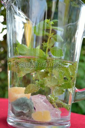 lemon balm water in glass jug
