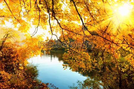 autumn sun on the river