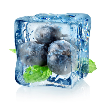 ice cube and blueberry