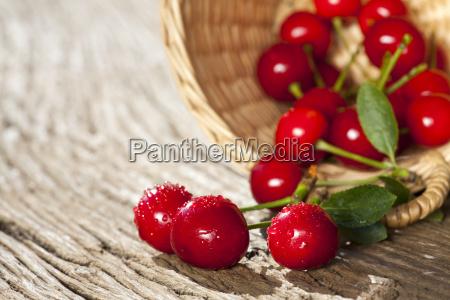 cherries in the willow basket